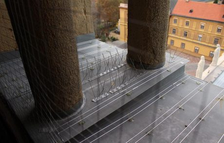 Metmark galambriasztás szerelés a Pécsi Székesegyházon 3